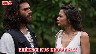 Episode 43 Erkenci Kuş (Early Bird): Summary And Trailer