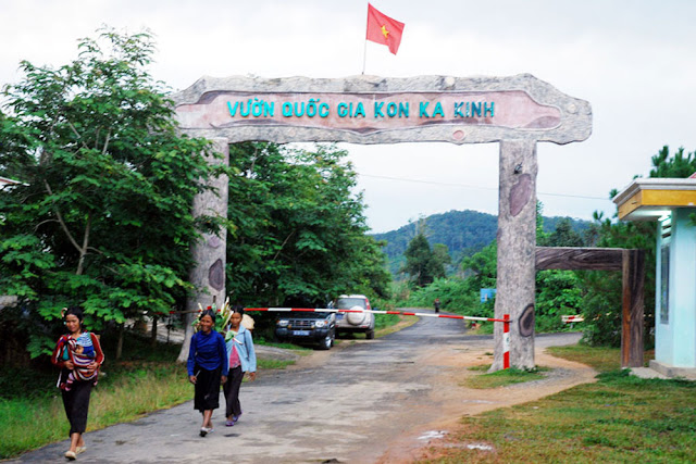 phat-trien-nghe-nuoi-yen-tai-tay-nguyen