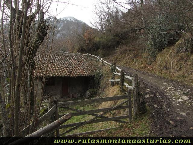 Cabaña subiendo pista a La Collaína