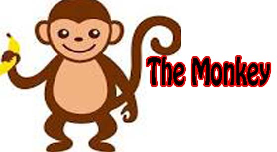 the monkey essay in english  hania naz grammar the best cover monkey