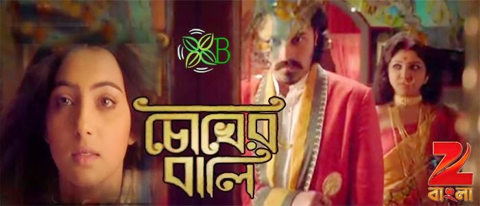 Chokher Bali, Zee Bangla, Bengali serial