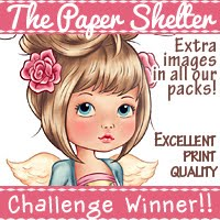 I won at the Paper Shelter Blog Hop