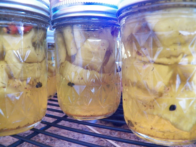 Asier (Danish Pickles)