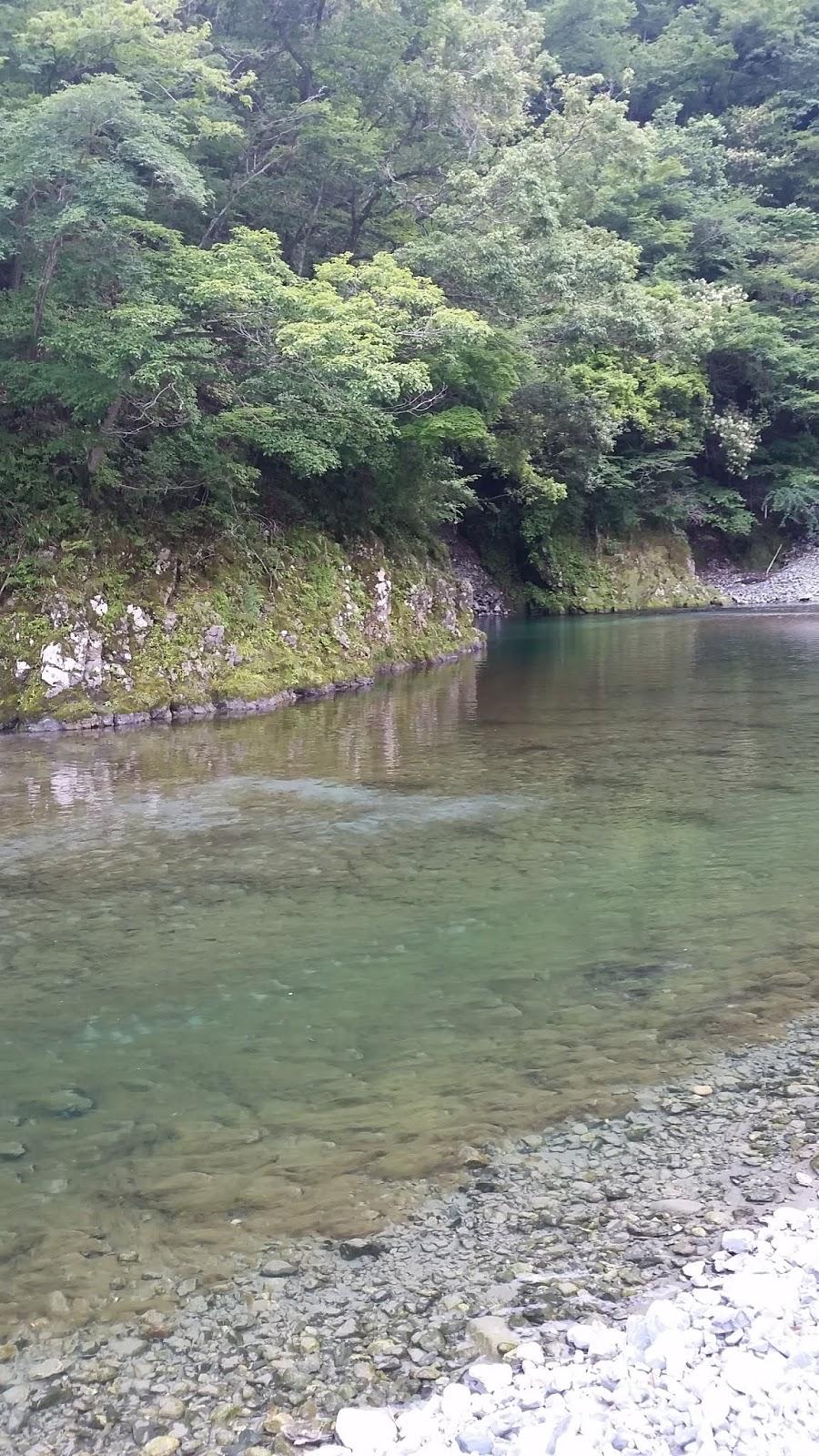 玄倉 川 水難 事故 ブログ
