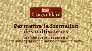Plan cacao Nestlé