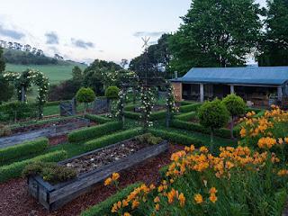 jardin con arbustos
