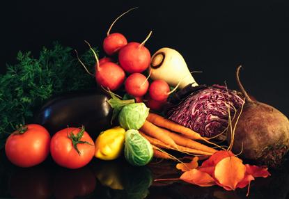 assorted vegetables on black background