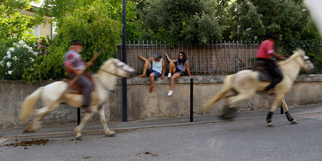 horsemen at the bull running south of France, languedoc