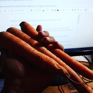 foto-artikel-wortel