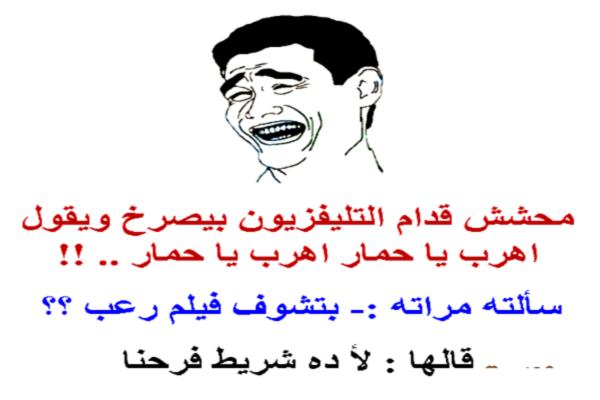 نكت مضحكة جدا جدا جدا مصريه 2019 تقتل من الضحك