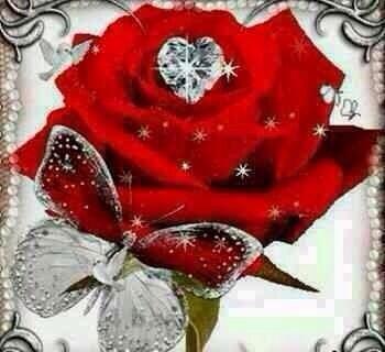 الورد للورد~~لعبة الانتقام %D9%88%D8%B1
