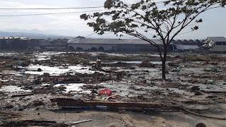 Tragedi Donggala, Palu