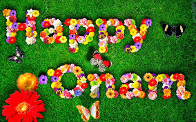 happy onam wishes images, happy onam wishes in english, happy onam wishes quotes, happy onam wishes sms, happy onam wishes sms in english, happy onam wishes in malayalam 2012, happy onam wishes messages, happy onam wishes hd wallpapers, happy onam wishes in malayalam pictures,