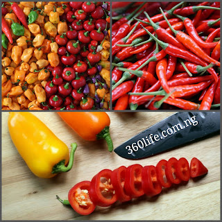 Pepper, 360life blog