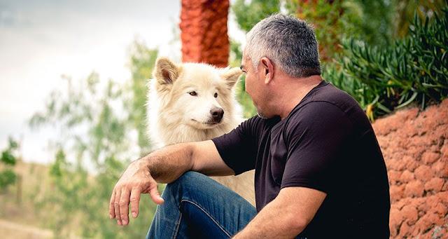 الوفاء لدى الكلاب