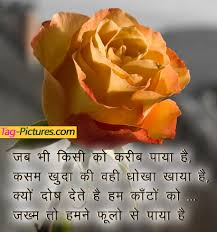 Original Good Afternoon Message In Hindi