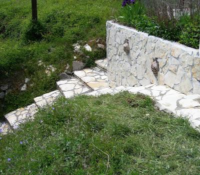 Επενδύω επιφάνειες με φυσική πέτρα