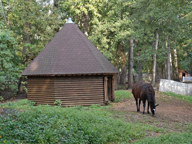 domek, trawa, drzewa, ogród zoologiczny