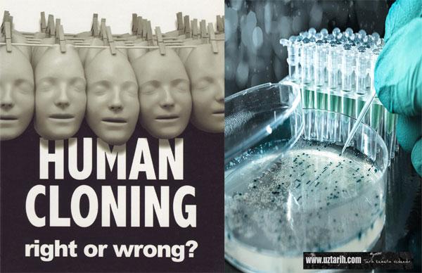 cloning, human cloning