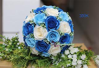 hoa hồng giấy cô dâu màu xanh