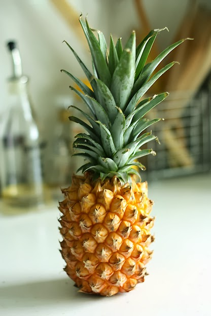 小胡子生活館-把喜歡的記下來: 種菠蘿