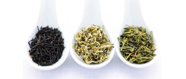 Effect of  Green,Black and White Tea