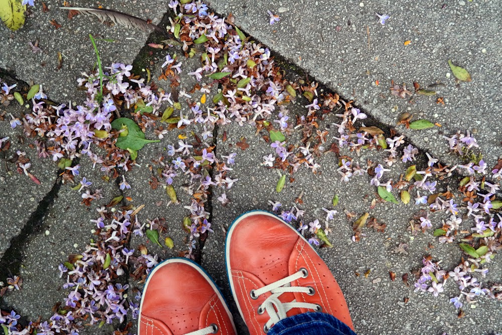 Why I Love Not Being a Driver: Orange shoes and lilac blossom