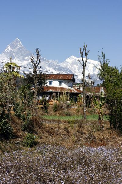 Nepal - Pokhara, Annapurna