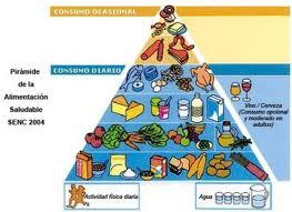 El Cuerpo Humano: El Metabolismo en el Ser Humano