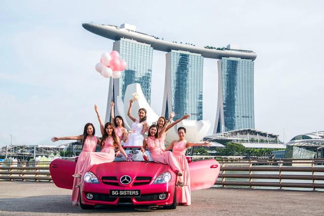Plus Size Dress Rental Singapore - Formal Dresses