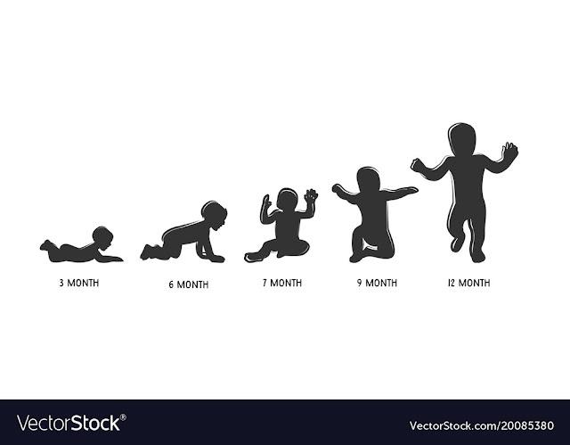 karakteristik perkembangan bayi