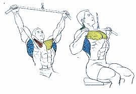 Jalón polea al pecho espalda ejercicio hombre rutina
