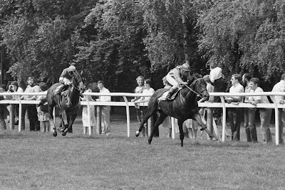 Habibti Wins Nunthorpe Stakes For John Dunlop 1983