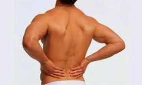 Tanaman Obat Untuk Sakit Pinggang Atau Nyeri Punggung
