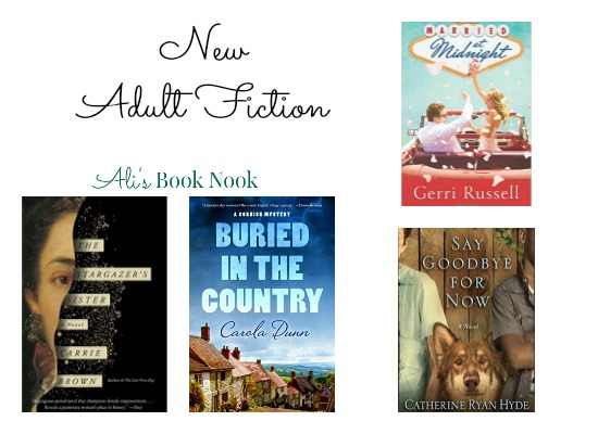 new fiction for adults dec 13 mystery, romance, women's rights, family