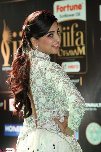 Poonam Kaur in Beautiful Floor Length Gown at IIFA Utsavam Awards 2017  Day 2  Exclusive 01.JPG
