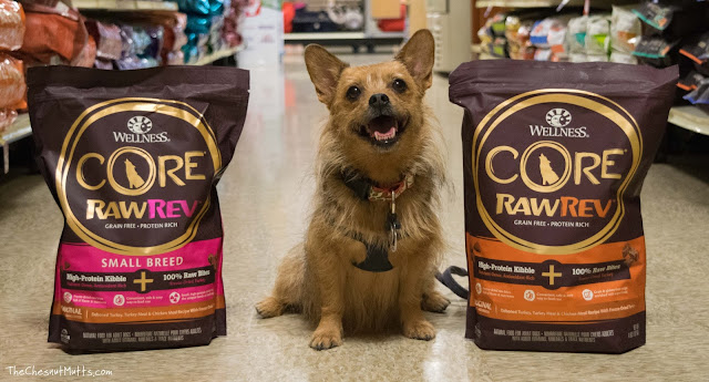 Jada at PetSmart next to her new high protein grain free dog food