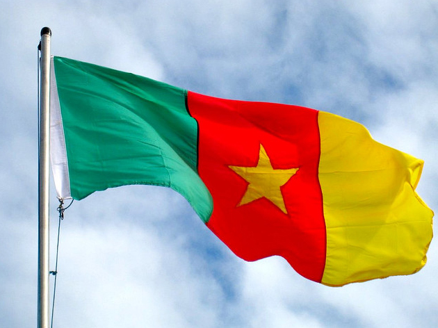 3d Wallpapers Download For Windows Xp Graafix Flag Of Cameroon Flag Graphics