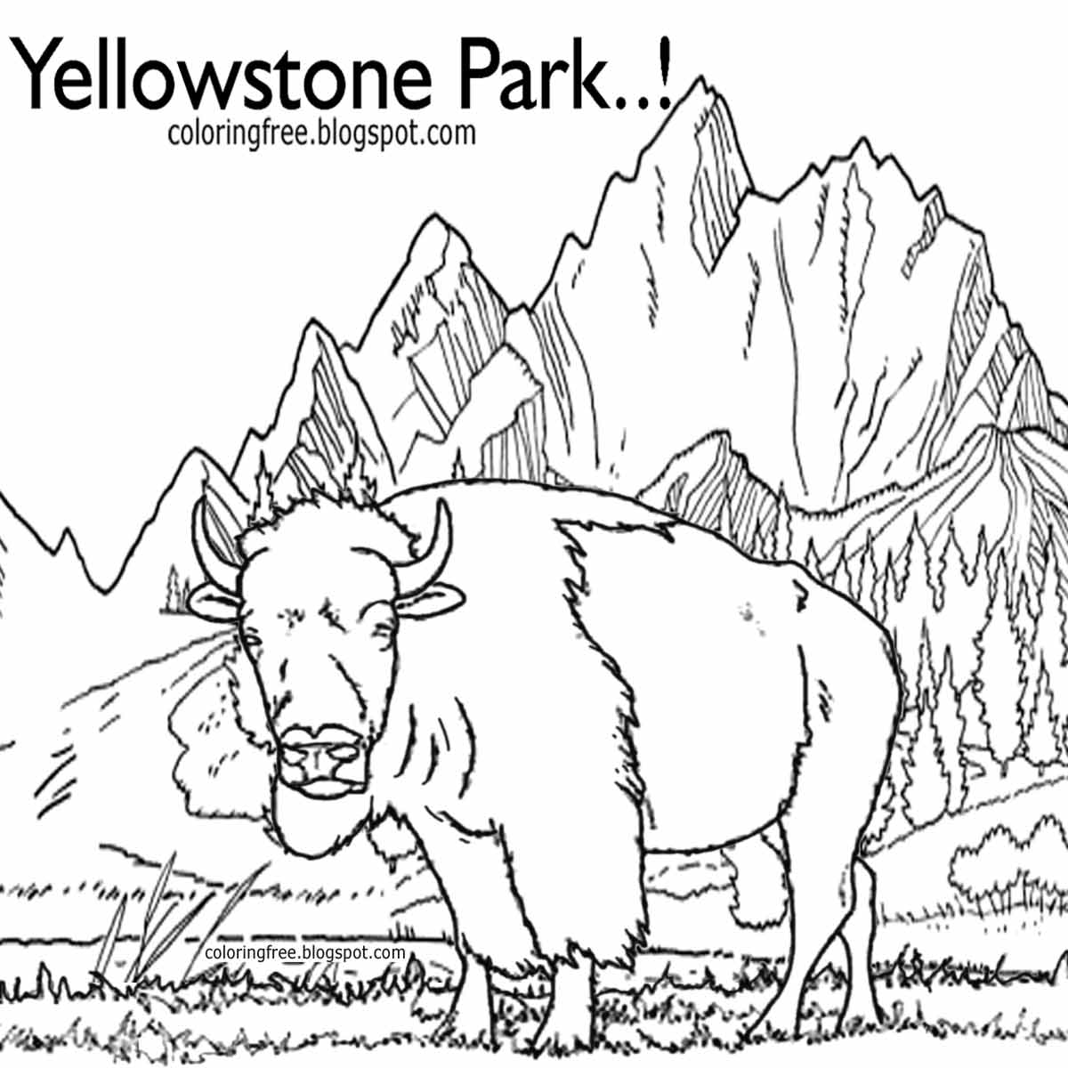 United States NP Yellowstone Wildlife Coloring Pictures Of Animals In North America Bison Grasslands