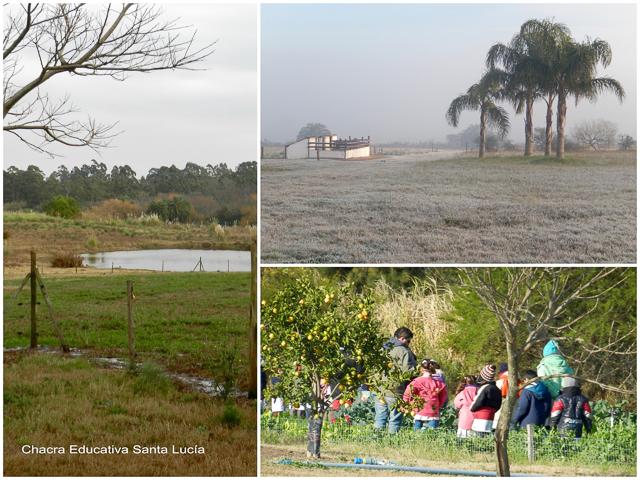 Invierno - Chacra Educativa Santa Lucía