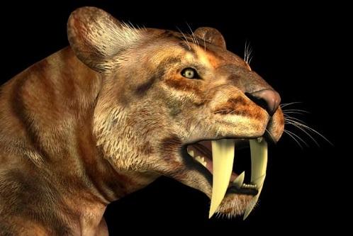 Atalarımızı Avlayan 10 Hayvan Türü