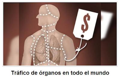 ¿Legalizar la matanza de personas para extraerles órganos?