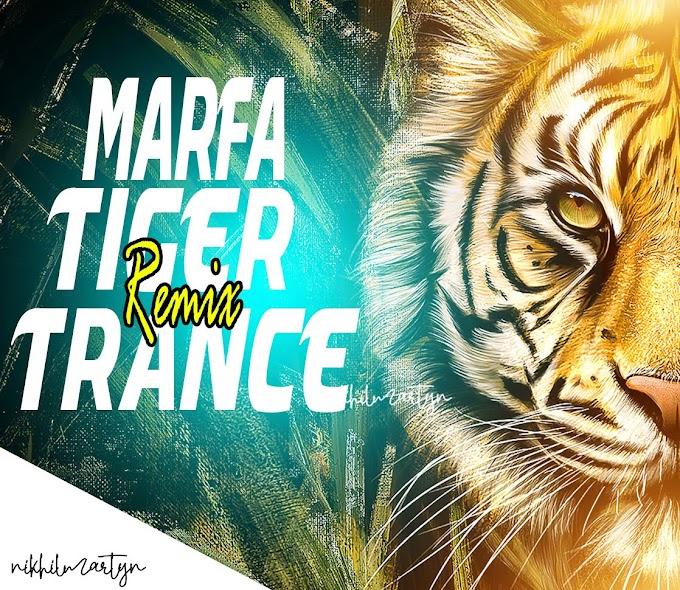 Hyderabadi Marfa Vs Tiger Trance   Dj Nikhil Martyn