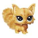 Littlest Pet Shop Multi Pack Mainely Flufftail (#79) Pet