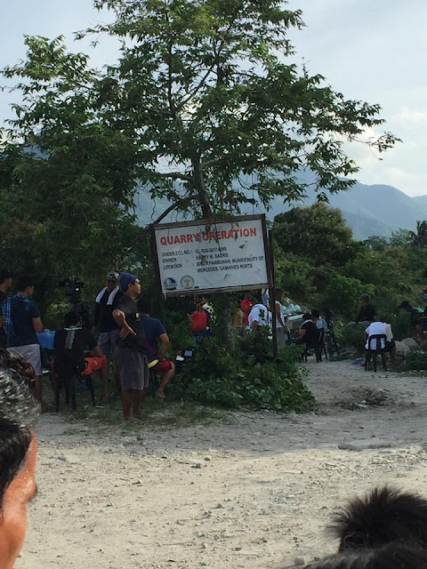Fans Climbed Up A Tree Just To Get A Glimpse Of Angel Locsin