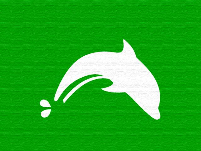 Dolphin, navegador rápido e prático no celular