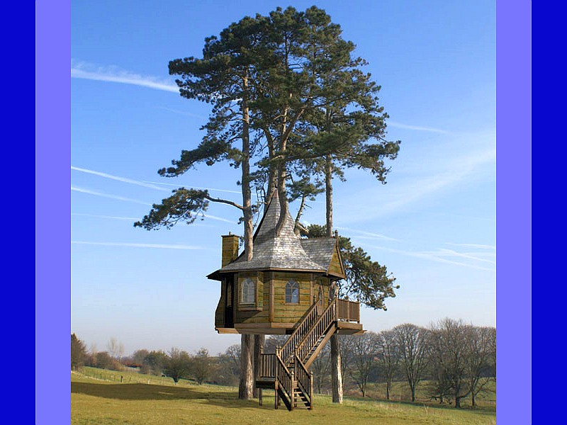 Top 20 Beautiful And Amazing Tree House Wallpapers,Pics on Modern:szae7Exnfpq= Amazing Houses  id=50513