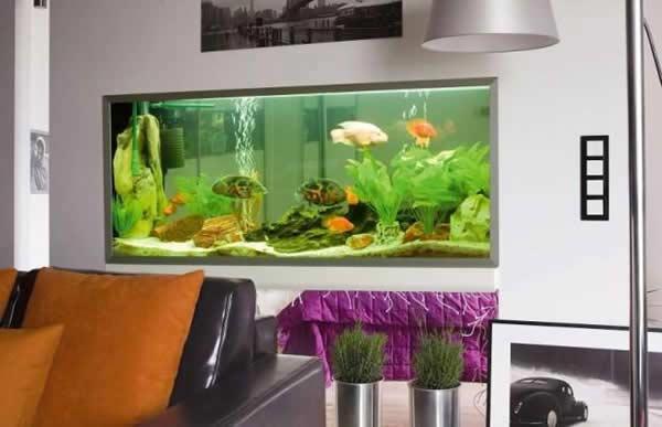 How to make wall aquarium and wall fish tank DIY