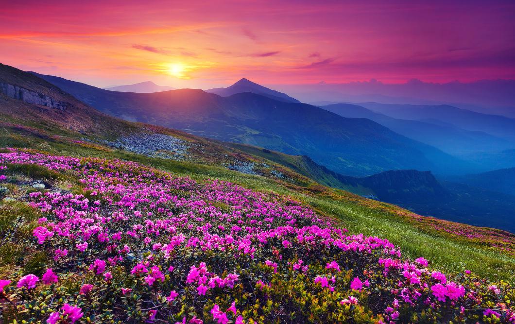 Fond ecran gratuit printemps paysage fonds d 39 cran hd for Fond ecran ete paysage