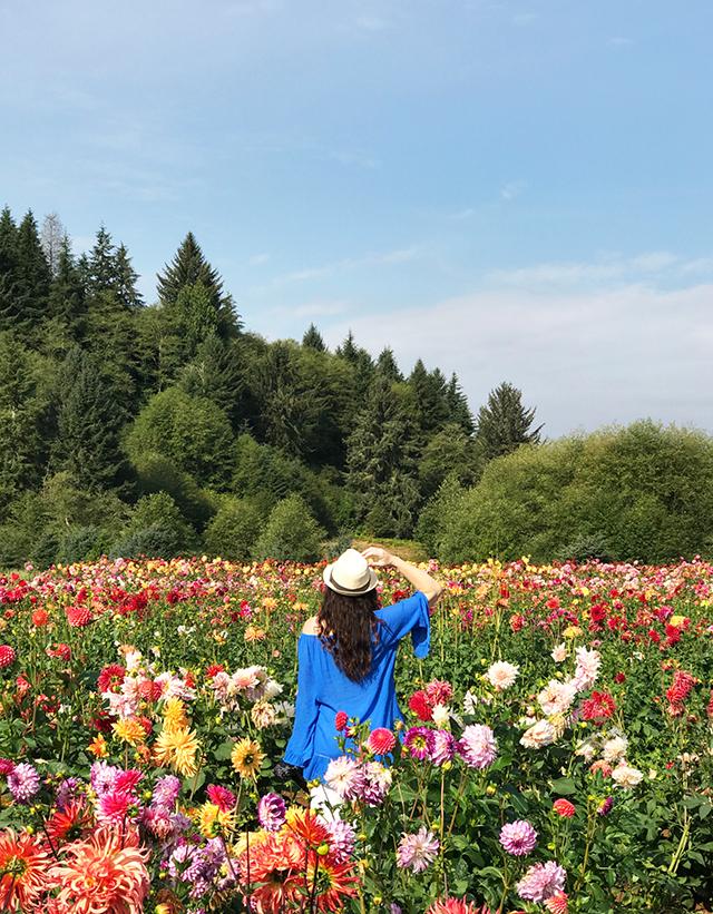 exploring we will go- a trip to the dahlia farm